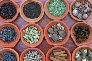 Ayurvedic-Herbs-and-Spices